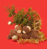 Teddy bears  and tree. Royalty Free Stock Image