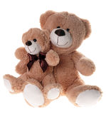 Teddy Bears. Two teddy bears friends isolated over a white background Stock Images