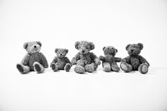 Teddy bears on white background. Teddy Bears black & white background Stock Image