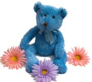 teddy blue bear Fotografia Royalty Free