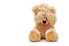 Teddy Royalty Free Stock Photos