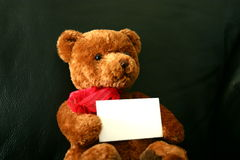 Teddy With Card. Soft brown teddy bear on a black leather couch with a red heart and red neckerchief holding a business card Royalty Free Stock Image
