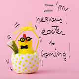 Teddy chick and text I am nervous easter is coming. A teddy chick in a hitched egg decorated with a dot-pattern and the text I am nervous easter is coming Stock Photos
