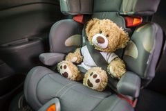 Teddy in the child seat of a car royalty free stock photo