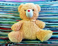 Teddy Colorfull Stock Afbeelding