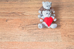 Teddy couple in love Stock Photo
