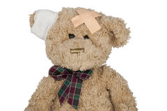 Teddy cut Royalty Free Stock Photos