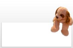 Teddy dog toy. Advertising promotion Stock Photo