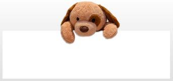 Teddy dog toy. Advertising promotion Royalty Free Stock Image