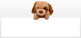 Teddy dog toy. Advertising promotion Stock Photos