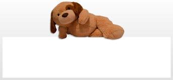Teddy dog toy. Advertising promotion Royalty Free Stock Photo