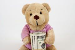 Teddy en geld Royalty-vrije Stock Fotografie