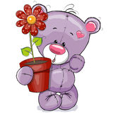 Teddy with flower Stock Image