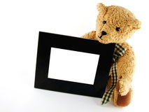Teddy With Frame Royalty Free Stock Photo