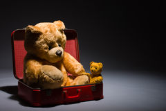 Teddy friends and suitcase Stock Photos