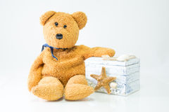 Teddy with gift box on white background.  Royalty Free Stock Photo