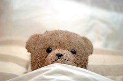 Teddy goes to bed Royalty Free Stock Photo