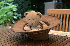 Teddy in a hat. Well worn teddy sitting in a hat Royalty Free Stock Photos