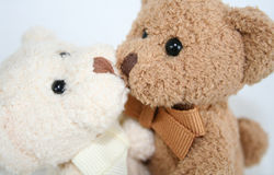 Teddy Hugs and Kisses. Brown and white teddy bears embrace and kiss Stock Images