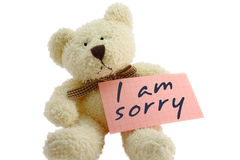 Teddy - i am sorry. Front view of teddy bear toy with I am sorry note, isolated on white background Stock Photography