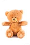 Teddy Isolated Stock Photos