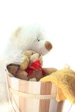 Teddy Laundry Stock Photo