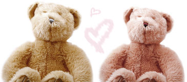 Teddy Love. Teddy sweethearts isolated on white Stock Image