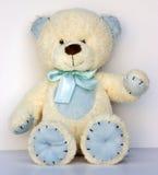 Teddy met wit Royalty-vrije Stock Foto's