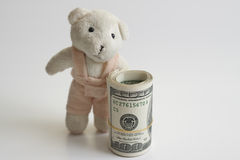 Teddy and money Stock Photo