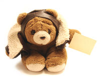Teddy pilot holding blank note Stock Image