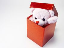 Teddy Present Royalty Free Stock Photos