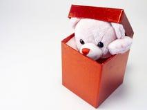 Teddy Present. Teddy Box Royalty Free Stock Photos