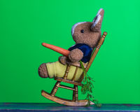 Teddy rabbit with carrot relaxed on the wooden rocking chair Royalty Free Stock Image