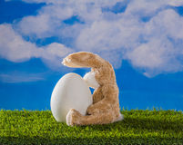 Teddy rabbit weight on when chick born. Stock Photography