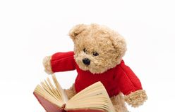 Teddy reading. Teddy bear reading a book dictionary educative Royalty Free Stock Images