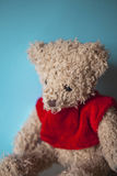 Teddy in red Royalty Free Stock Photo