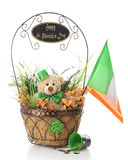 Teddy's St. Patrick's Day Wishes Royalty Free Stock Image