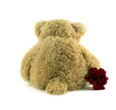 Teddy sitting. Teddy sat with back facing holding red flower Stock Photography