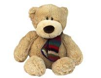 Teddy sitting. Teddy Bear sitting  down, wearing a bright scarf Royalty Free Stock Photo