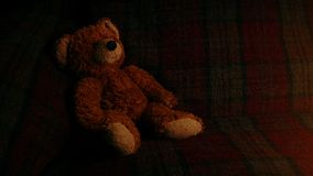 Teddy On Sofa In Firelight arkivfilmer