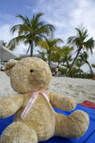 Teddy at tropical beach Royalty Free Stock Image