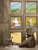 Teddy In The Window Stock Images