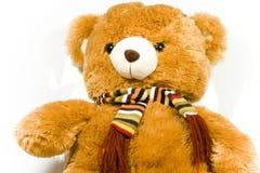 Teddybär Lizenzfreies Stockfoto