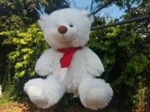Teddybär auf dem Hinterhof Lizenzfreie Stockfotografie