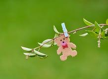 Teddybär auf einer Niederlassung Lizenzfreies Stockfoto
