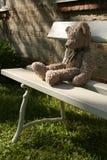 Teddybär betreffen Bank Lizenzfreies Stockbild