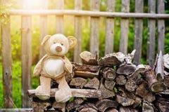 Teddybär betreffen die Bank Stockfoto