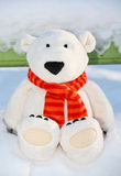 Teddybär betreffen die Bank stockbilder