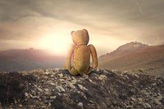 Teddybär in der Mitte von Nirgendwo lizenzfreie stockfotos