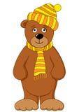 Teddybär in der Schutzkappe und im Schal Stockfoto